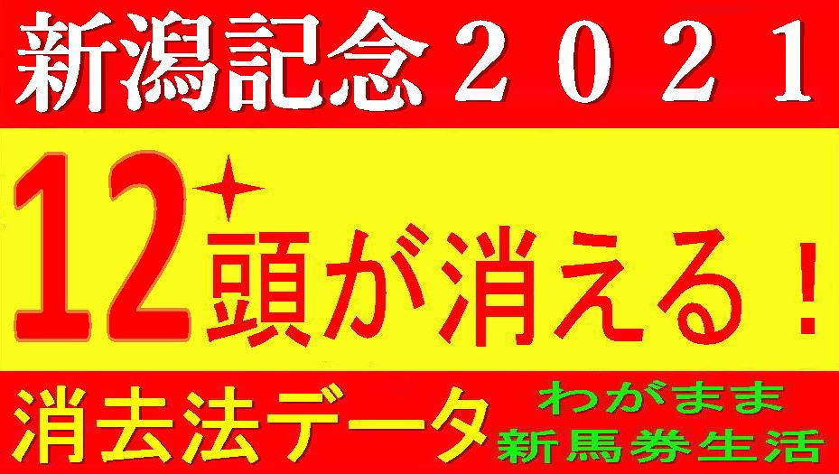 新潟記念2021消去法データ(過去10年)|サマー2000シリーズ最終戦です